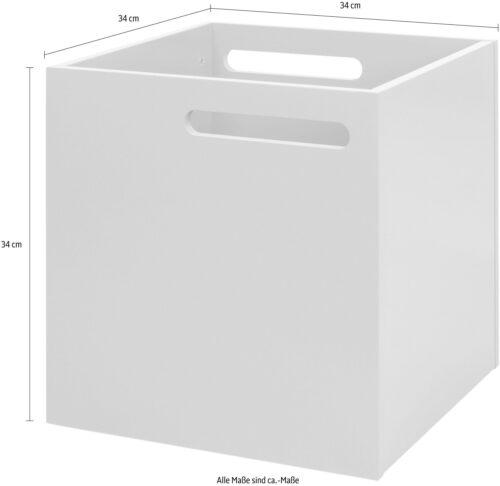 TemaHome Aufbewahrungsbox Berlin mit Muldegriffen für einen praktischen Transport B53527751 UVP 79,99€ | 53527751 5